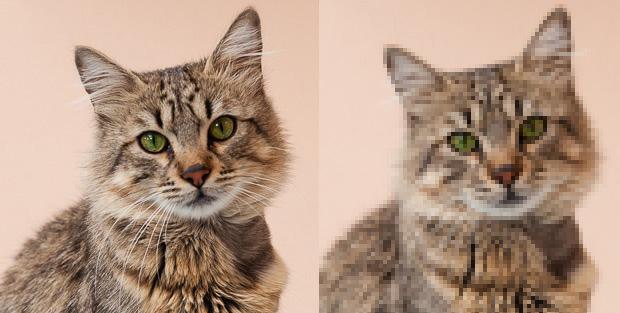 Image de qualité VS image pixelisée