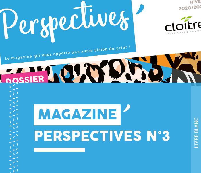 Livre blanc - Magazine Perspectives N°3